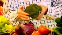 Healthy Eating Tips : Healthy Eating & Vegetables