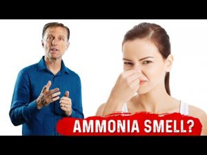 Today we're going to talk about why your urine may give off a strong ammonia odor when you're on keto